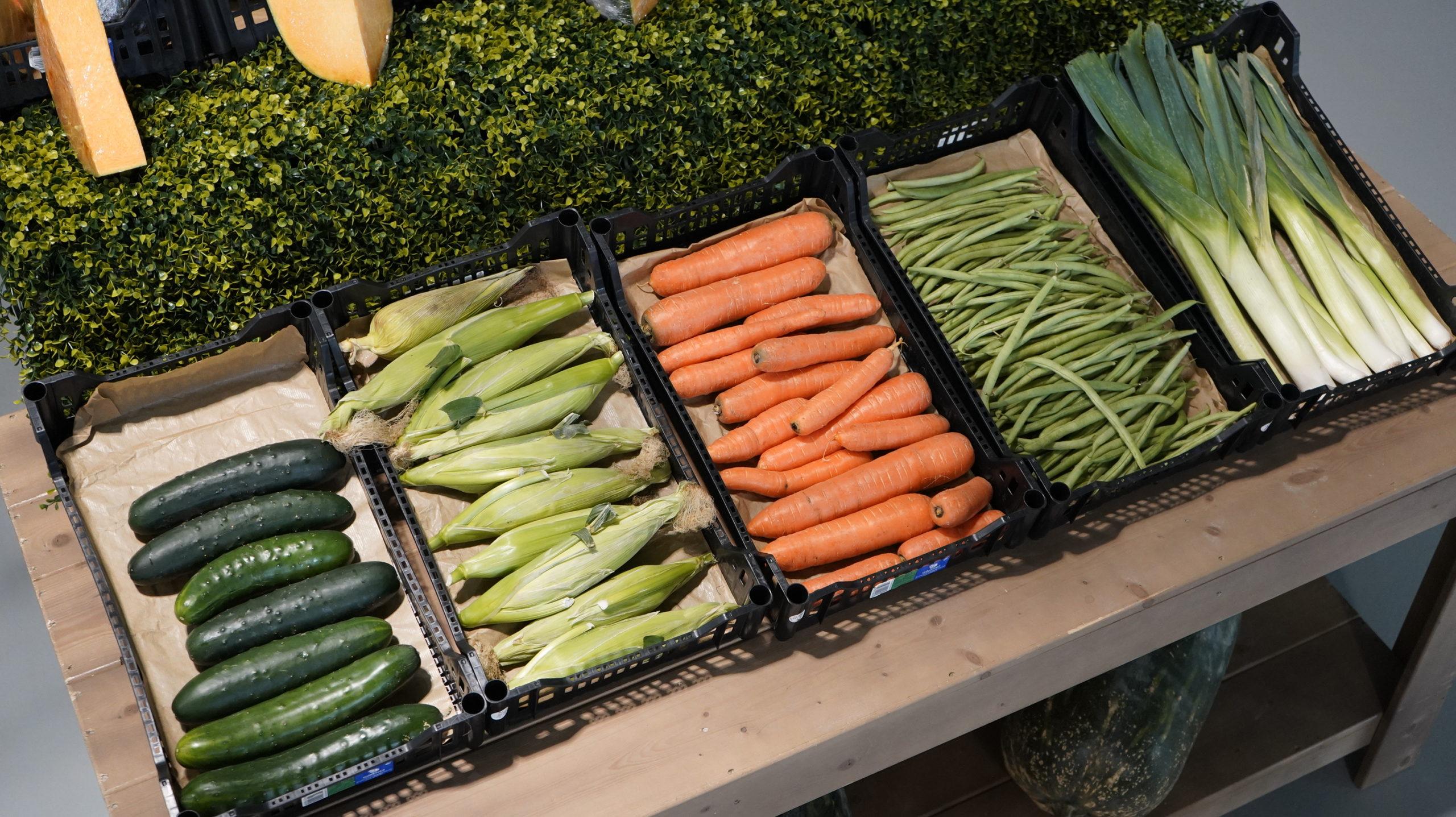 Roots Fruta & Verdura 46